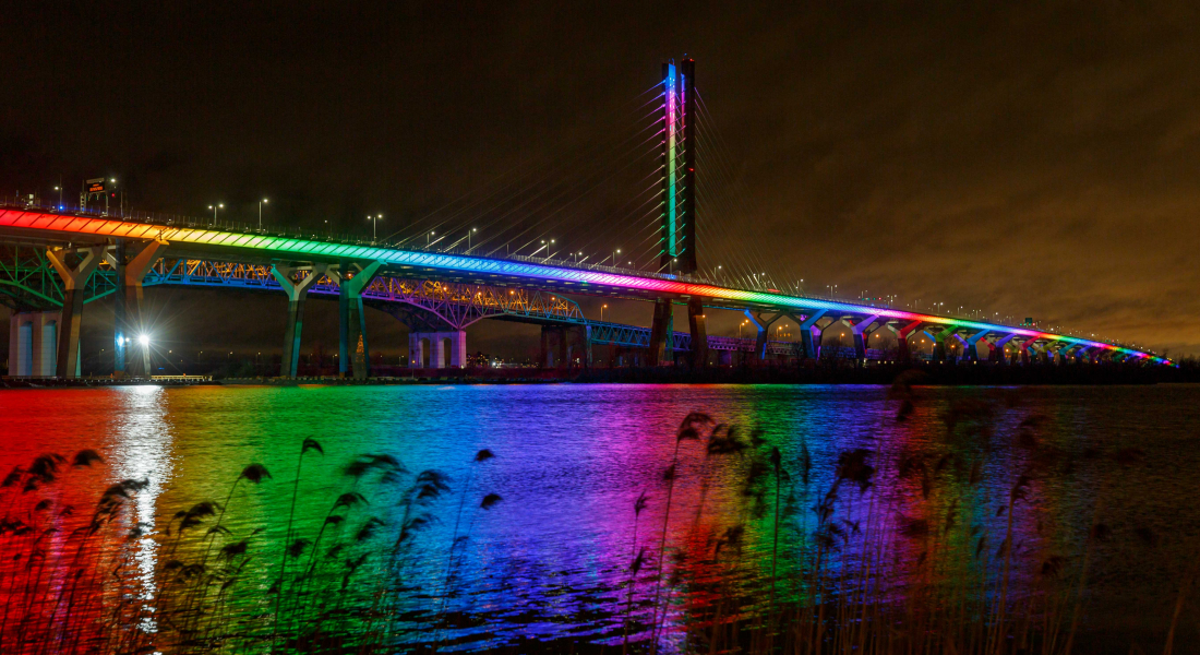 bridge at night with weeds in front